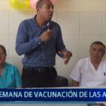 Piura: Semana de Vacunación en las Américas