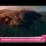 Internacional: Depredador está de regreso en nuevo tráiler