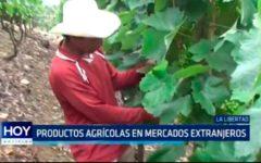 Productos agrícolas en mercados extranjeros