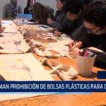 Chile: Confirman prohibición de bolsas plásticas para comercio