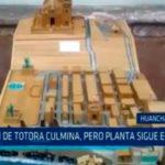 Exposición de totora culmina, pero planta sigue en peligro
