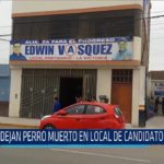 Chiclayo: Dejan perro muerto en local de candidato distrital