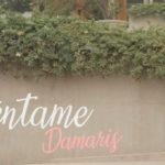 """Nacional: Damaris presenta versión de """"Cuéntame"""" en honor a Pedro Suárez Vértiz"""