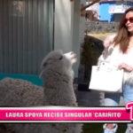 "Nacional: Laura Spoya recibe singular ""Cariñito"""