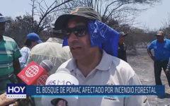 Chiclayo: El bosque de Pomac afectado por incendio forestal