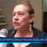 """""""Ley debe ser perfeccionada para una debida implementación"""""""