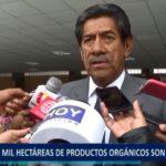 Piura: 18 mil hectáreas de productos orgánicos son exportados