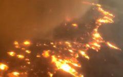 E.E.U.U: Ascienden a 31 los muertos en los incendios de California