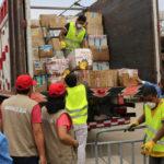 Destruyen 15 toneladas de medicamentos ilegales incautados en operativos