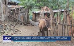 Chiclayo: Sequía en cañaris vendría afectando zona altoandina