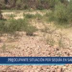Chiclayo: Preocupante situación por sequía en Salas
