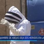 Chiclayo: Enjambre de abejas deja dos heridos en La Victoria