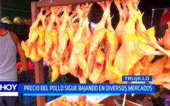 Trujillo: El precio del pollo se mantiene bajo