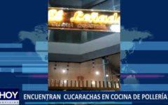 """Piura: Encuentran cucarachas en cocina de Pollería """"El Leñador"""""""