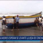 Chiclayo: Pescadores esperan se levante la veda de concha de abanico