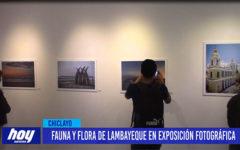 Chiclayo: Fauna y flora de Lambayeque en exposición fotográfica