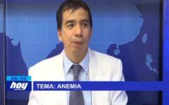 Chiclayo : Anemia