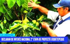 Declaran de interés nacional 2° Etapa de Proyecto Jequetepeque