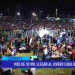 Chimbote: Más de 10 mil llegan al vivero cada día
