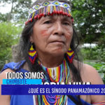 Chimbote: ¿Qué es el sínodo panamazónico 2019?
