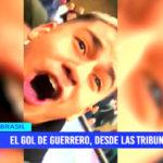 Copa América: El gol de Guerrero, desde las tribunas