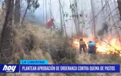 Plantean aprobar sanciones por quema de pastos