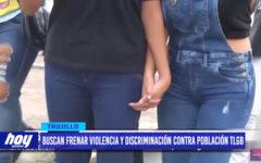 Buscan frenar violencia y discriminación contra población TLGB