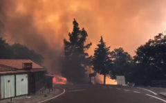Incendio forestal en Gran Canaria arrasa con todo
