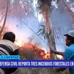 Defensa Civil reporta tres incendios forestales en la región