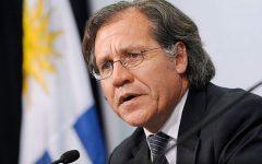 Luis Almagro, secretario general de la OEA, recibió en Miami el Premio MasterMind Latino 2019