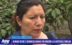 DEMUNA recibe 5 denuncias diarias por omisión a la asistencia familiar